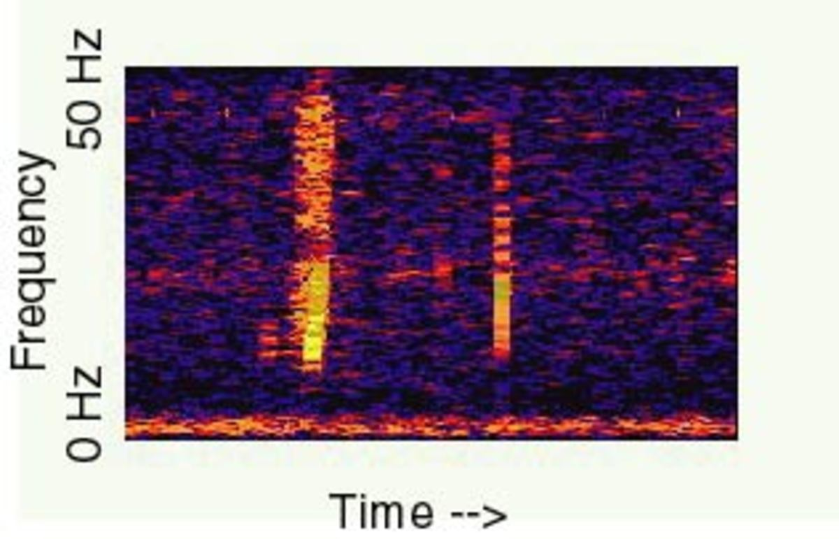 A spectrogram of the mysterious 'Bloop'