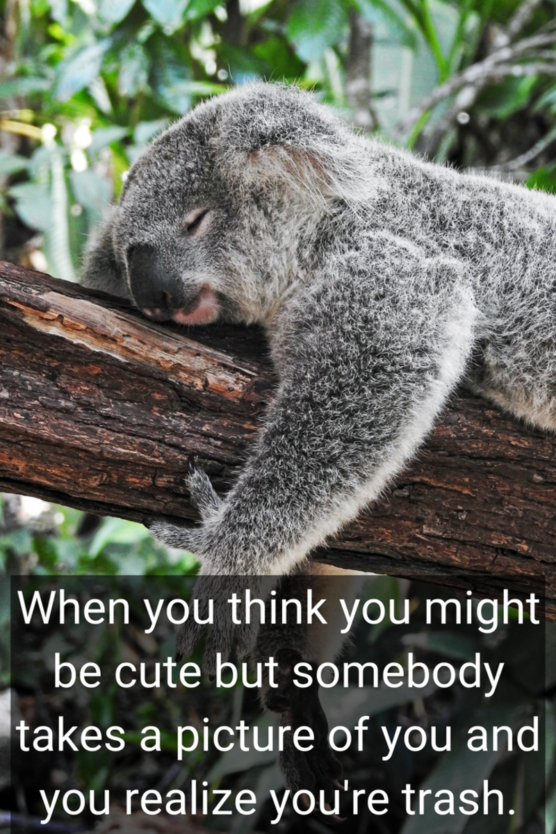 Funny And Cute Instagram Captions For Selfies Turbofuture