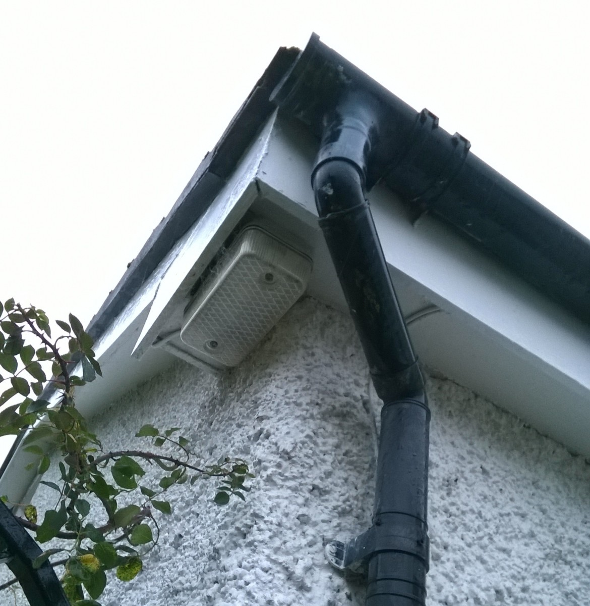 Downpipes and gutters