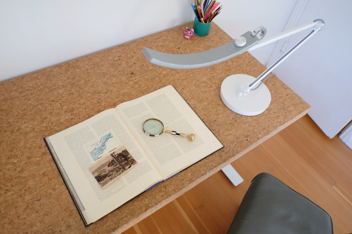 The BenQ eReading LED lamp is ideal for computer work or reading. Or poring over vintage books with a magnifying glass, as one does.
