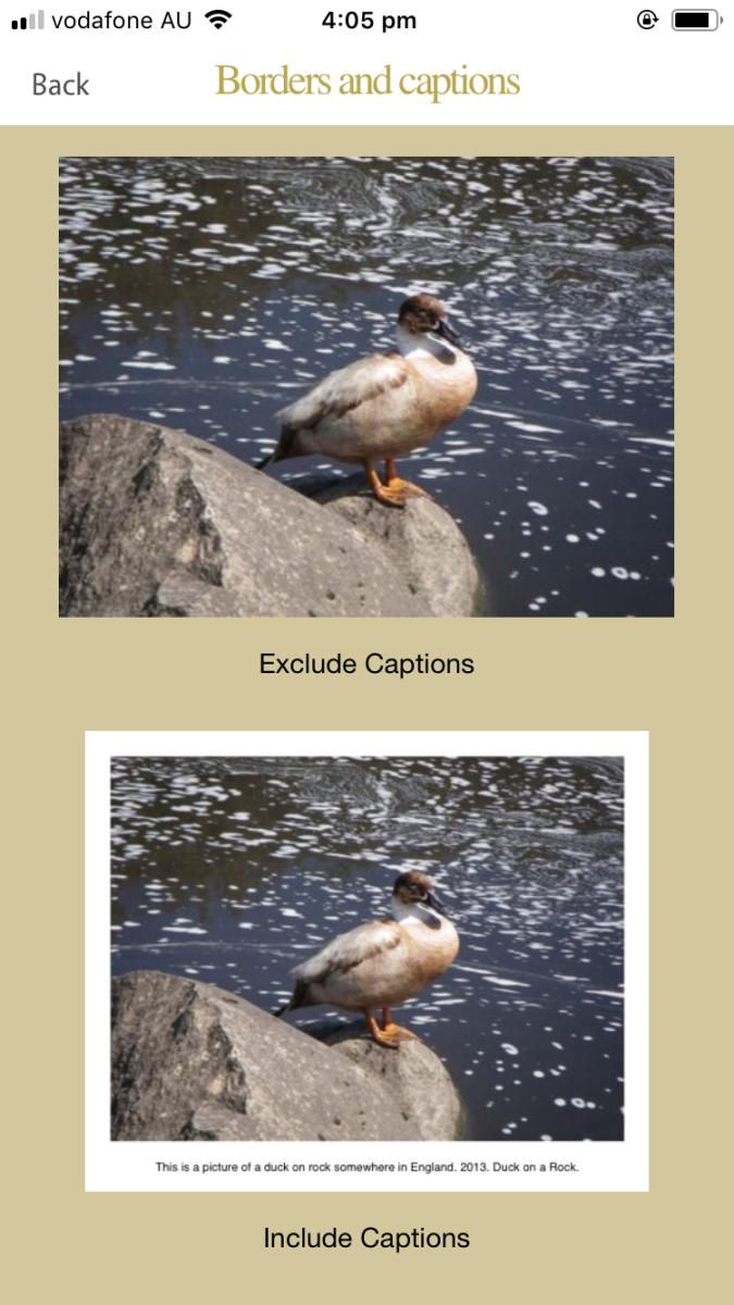 Image options for saving