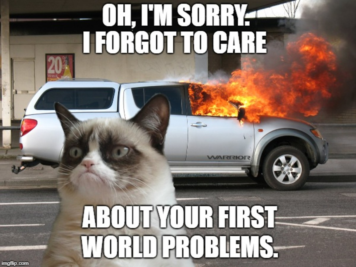 funny-first-world-problems