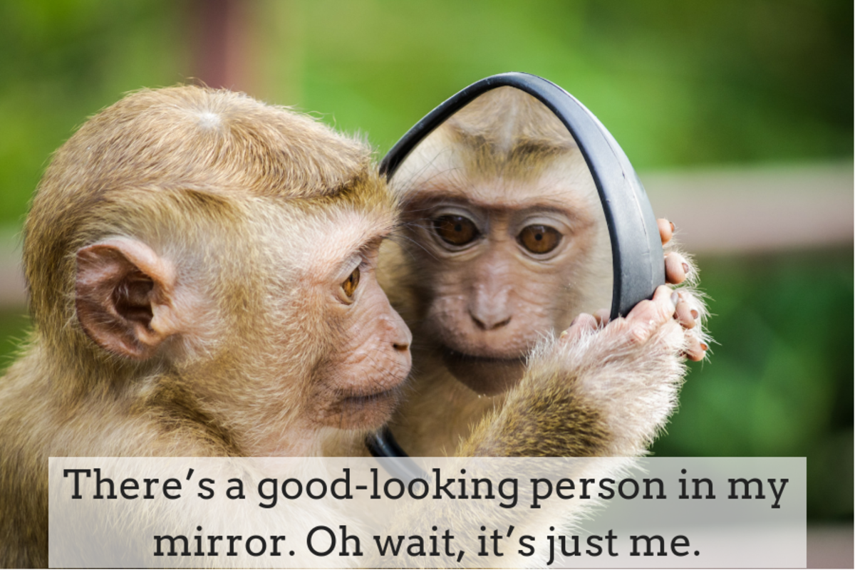 150 Mirror Selfie Quotes and Caption Ideas | TurboFuture