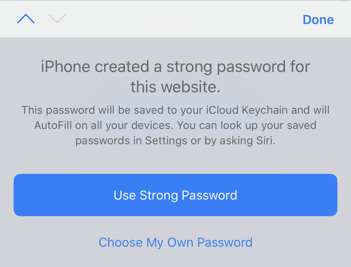 iCloud Keychain can generate and remember secure passwords