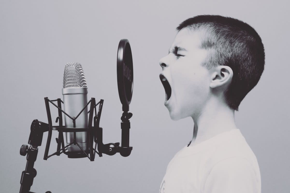 A good microphone may become your best friend, especially if you keep yelling at it.