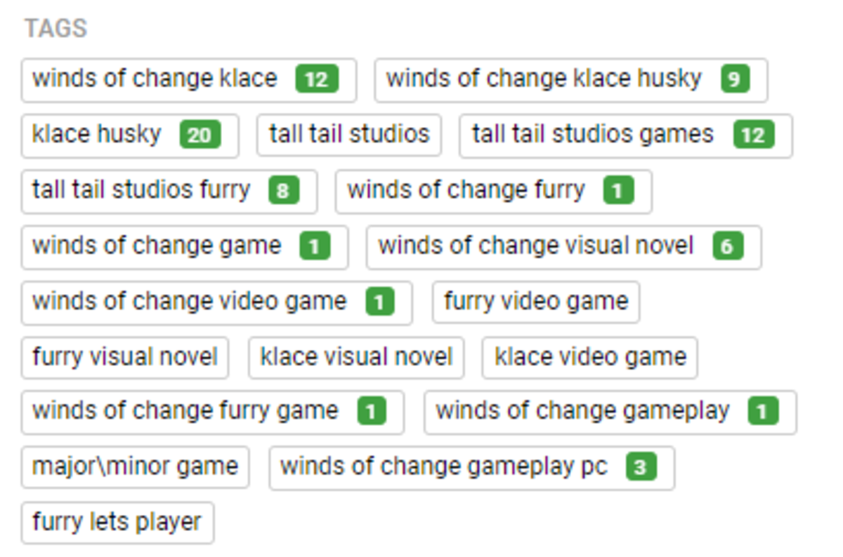What it looks like to view tags using TubeBuddy.