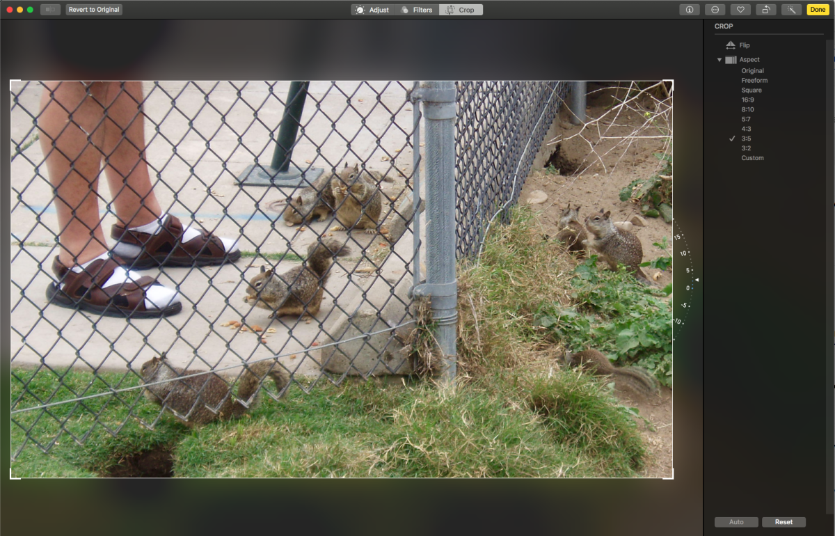 """Here is a screenshot of the Photos editor, after you've clicked on """"Crop."""" Here I will check to make sure the fence post is straight, resize the photo to 3x5"""", and make the frame smaller, if I want to zoom in on particular features."""