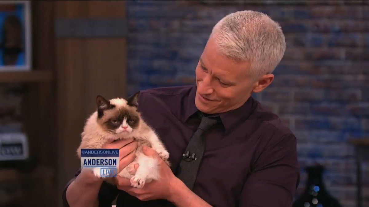 Grumpy Cat with Anderson Cooper