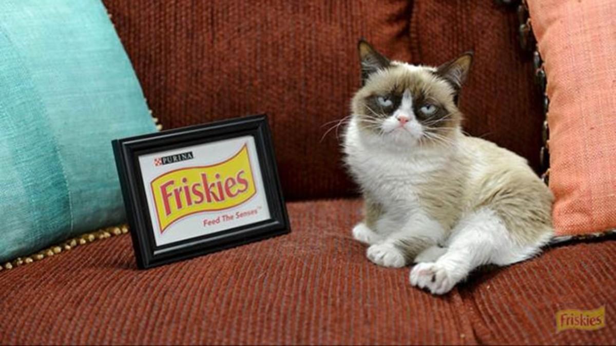 Grumpy Cat with Friskies sign