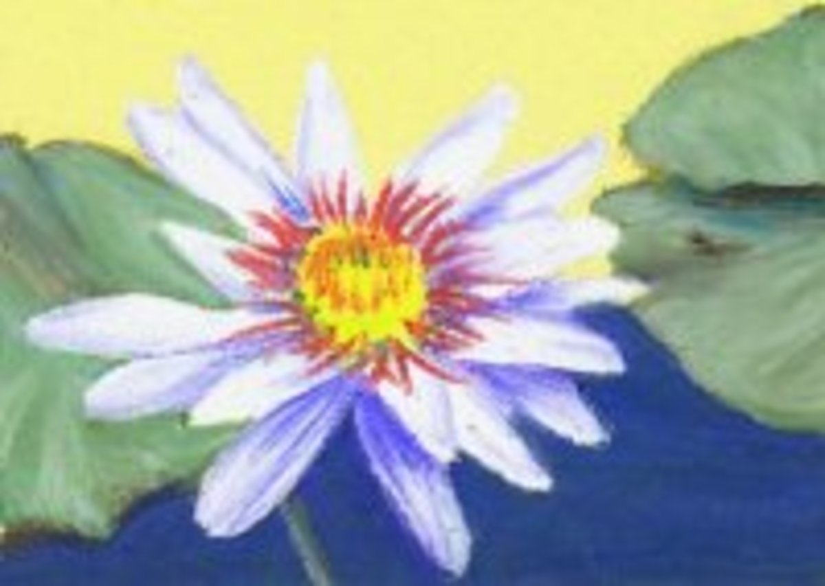 fine-art-oil-pastels-are-worth-the-cost