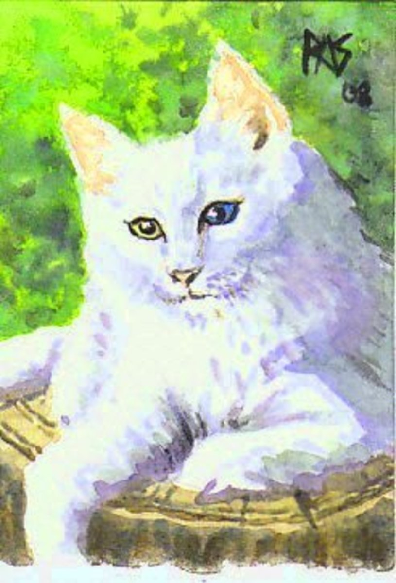 Here is one of my Norwegian Forest cat pieces based on a photo by DeviantArt member Wazabees.