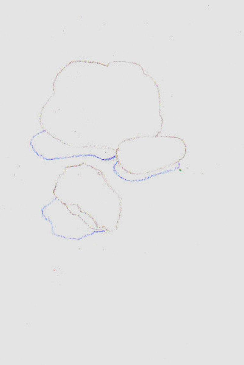 This stage of underdrawing is called a Contour Drawing. If the contours are complicated you can also outline modeling shadows. Sometimes on rocks it's easier not to. This demo we'll shade the modeling shadows and contours in without outlining.