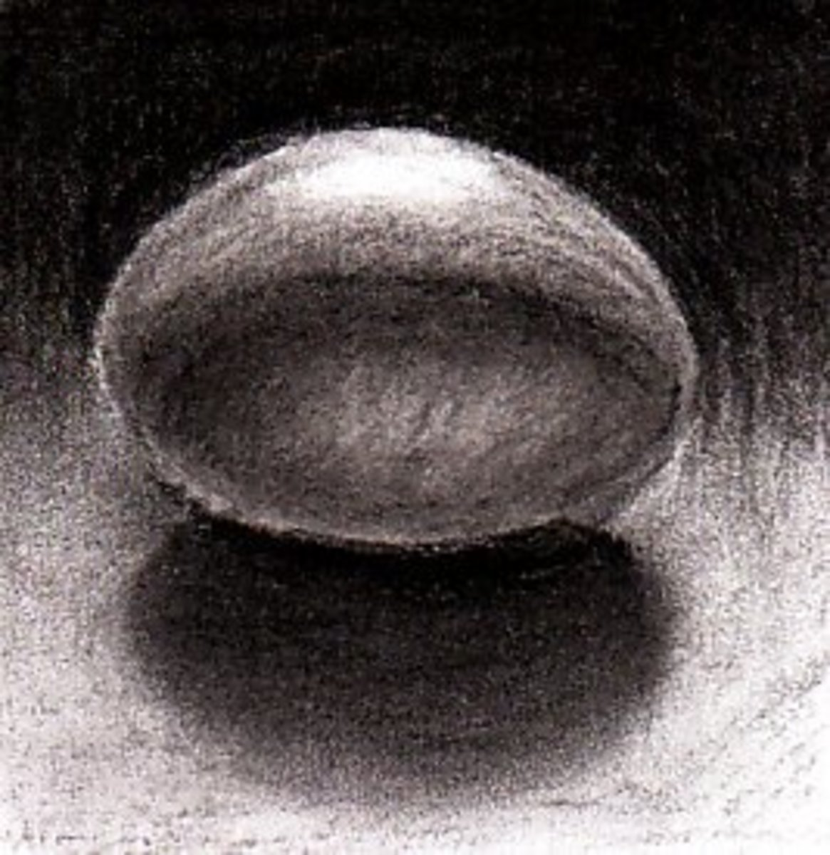 The completed egg drawing by Robert A. Sloan, charcoal pencil on paper.