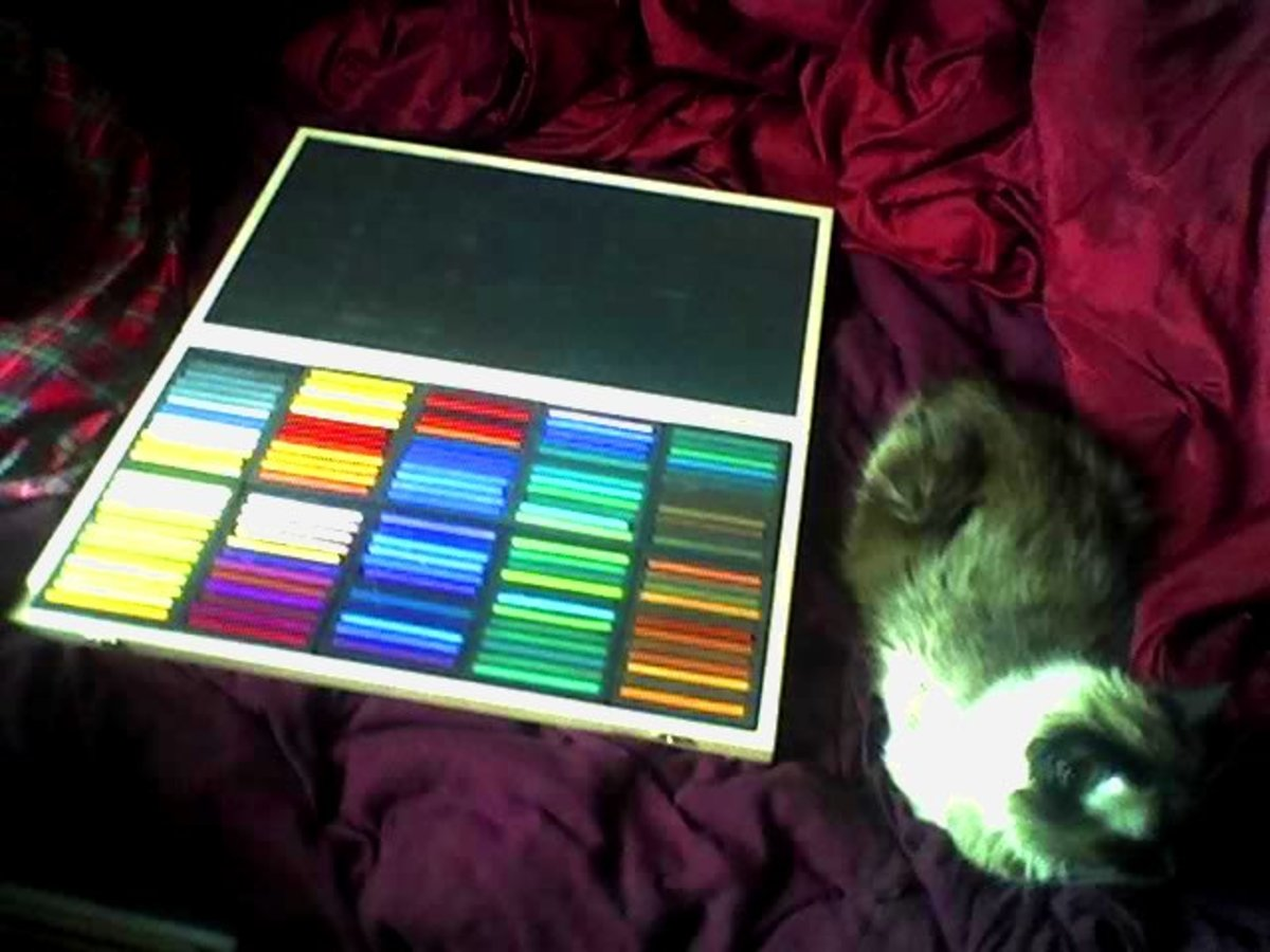 Photo of my new 120 color Richeson hard pastels full range wood box set, with my large cat Ari for size comparison. It's a big box! Robert A. Sloan
