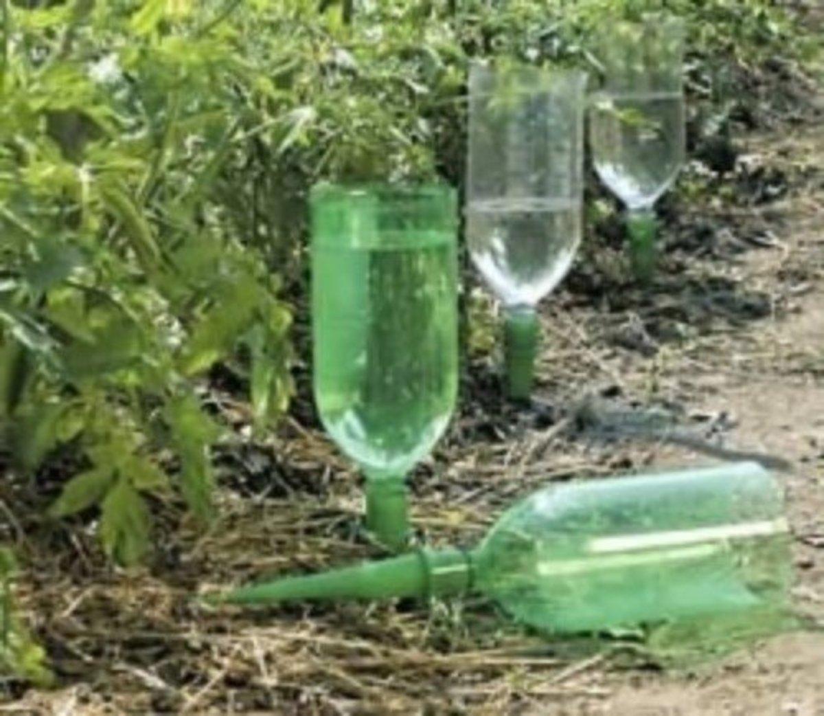 reuseplasticbottles