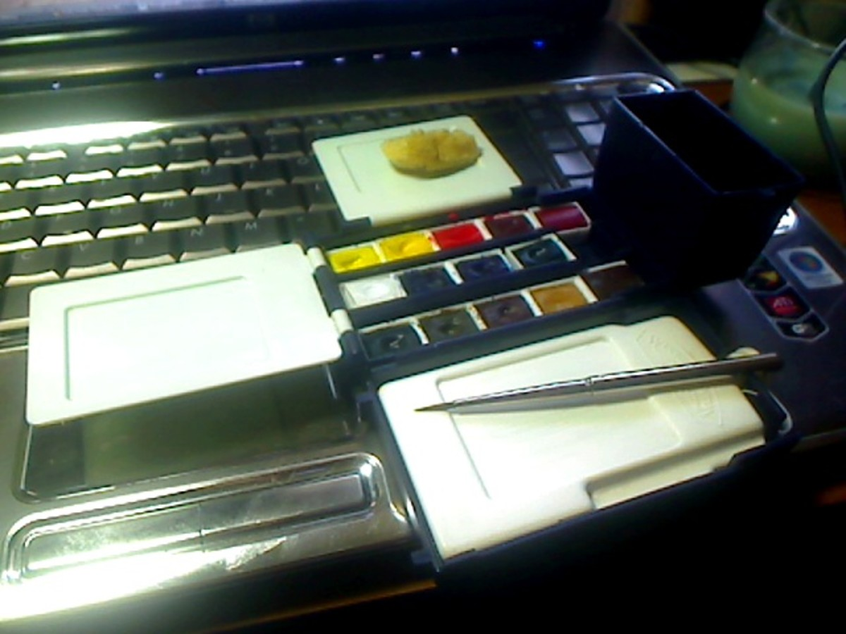 Photo of my Winsor & Newton Artist's Field Box with two additional colors: Permanent Rose and Quinacridone Gold.