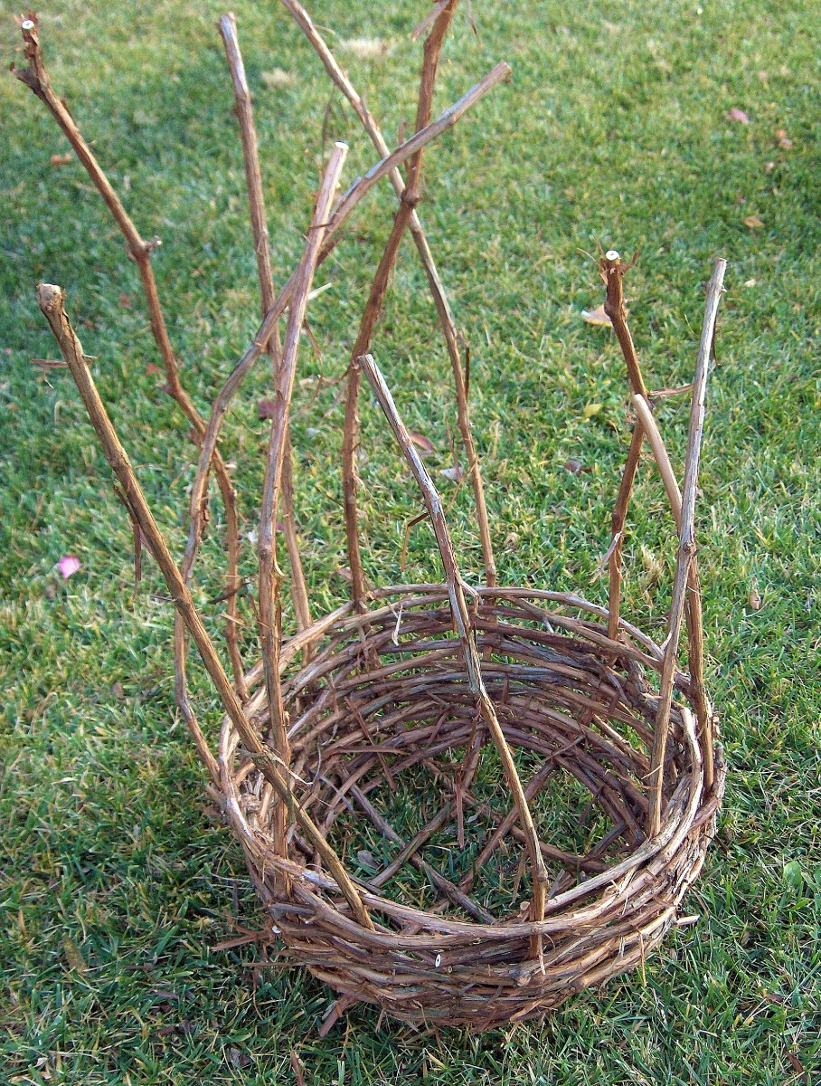 DETERMINE GOOD STAGE TO WEAVE IN SPOKES TO FORM RIM OF BASKET