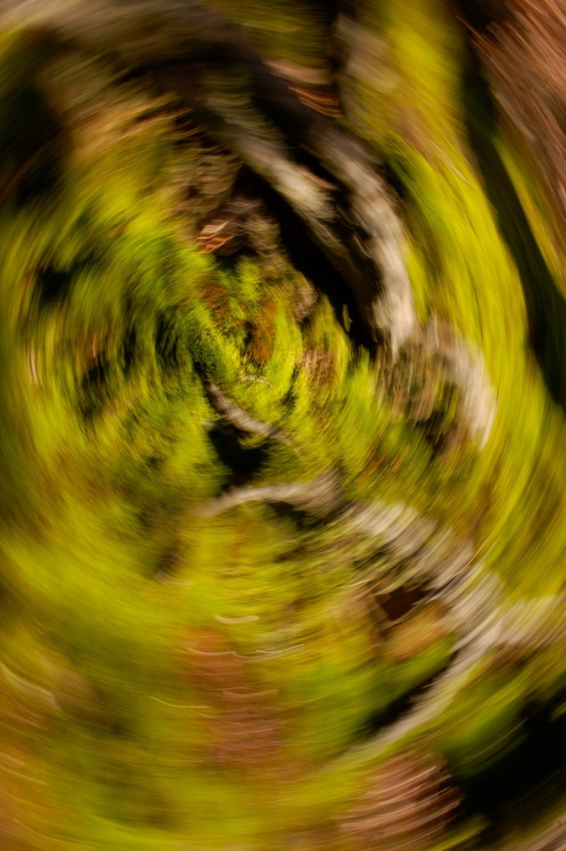 Slow shutter speed effect: spin the camera