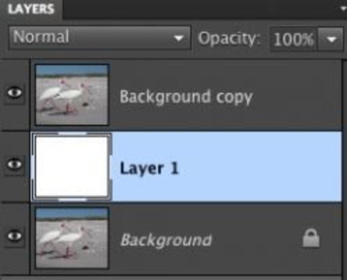 Add a new white layer.