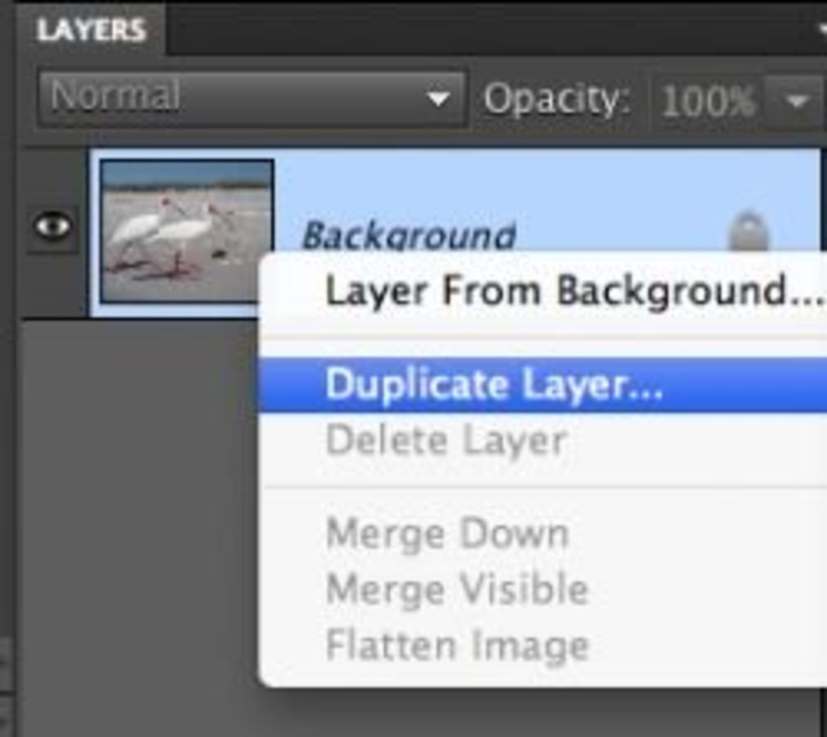begin with a duplicate layer.