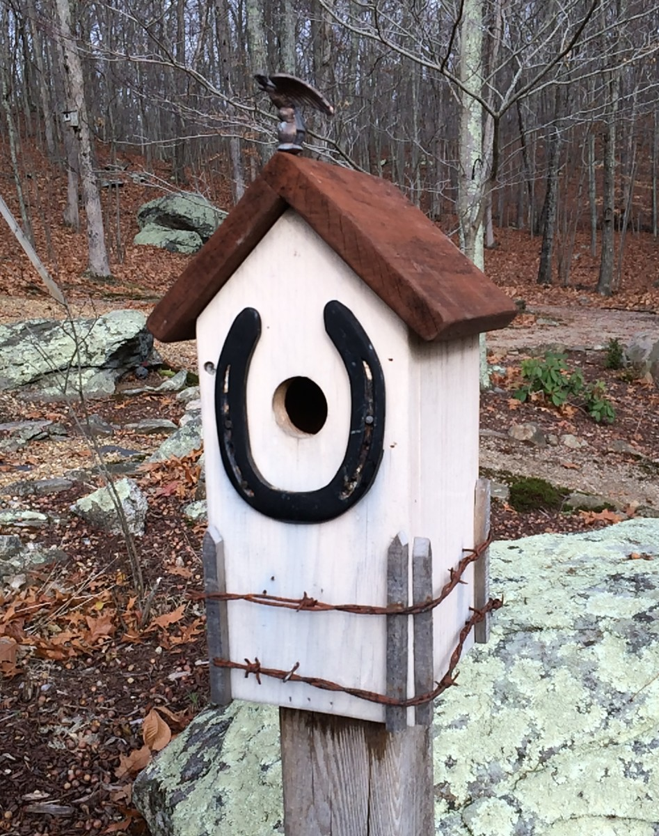 A lucky horseshoe bluebird house.The brass eagle was a flea market find.