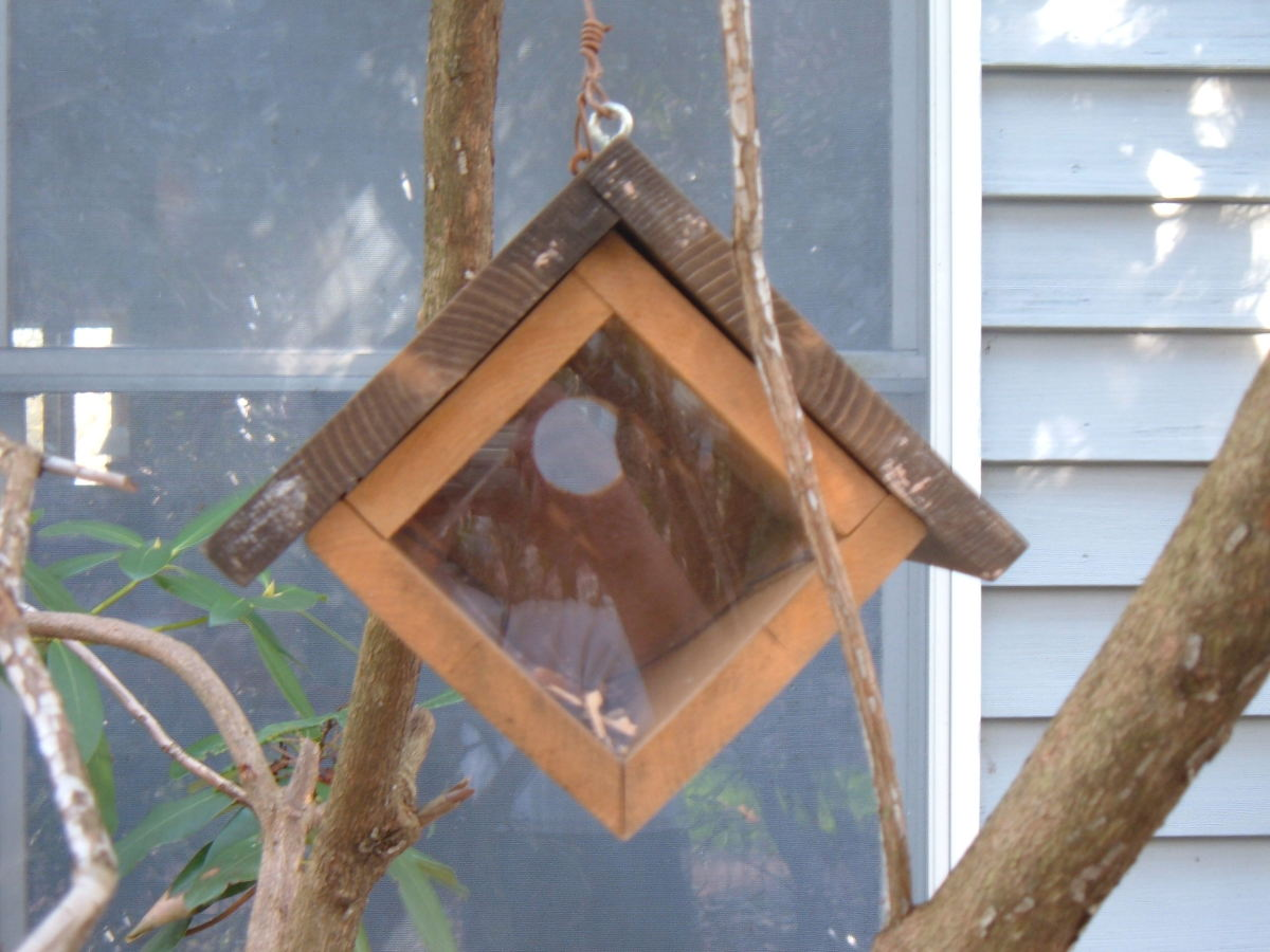 Birdhouse with a view!