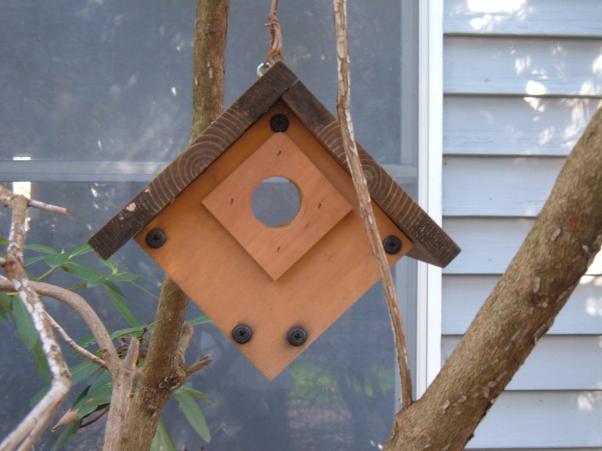 Window Nesting Box