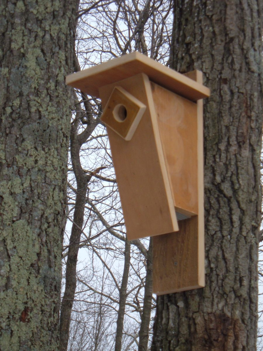 This Peterson style bluebird birdhouse has provided a safe nesting place for several generations of bluebirds.