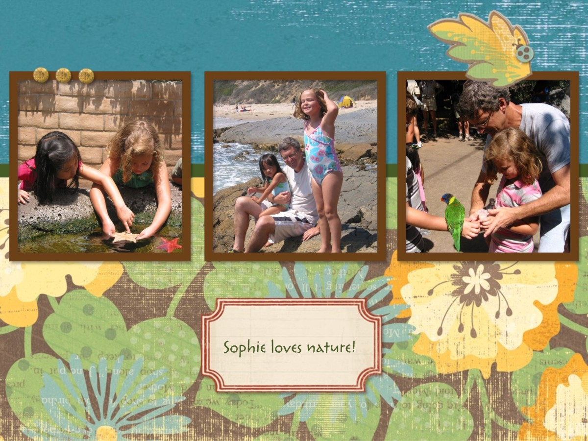 Free page templates are the fastest way to put your albums together.