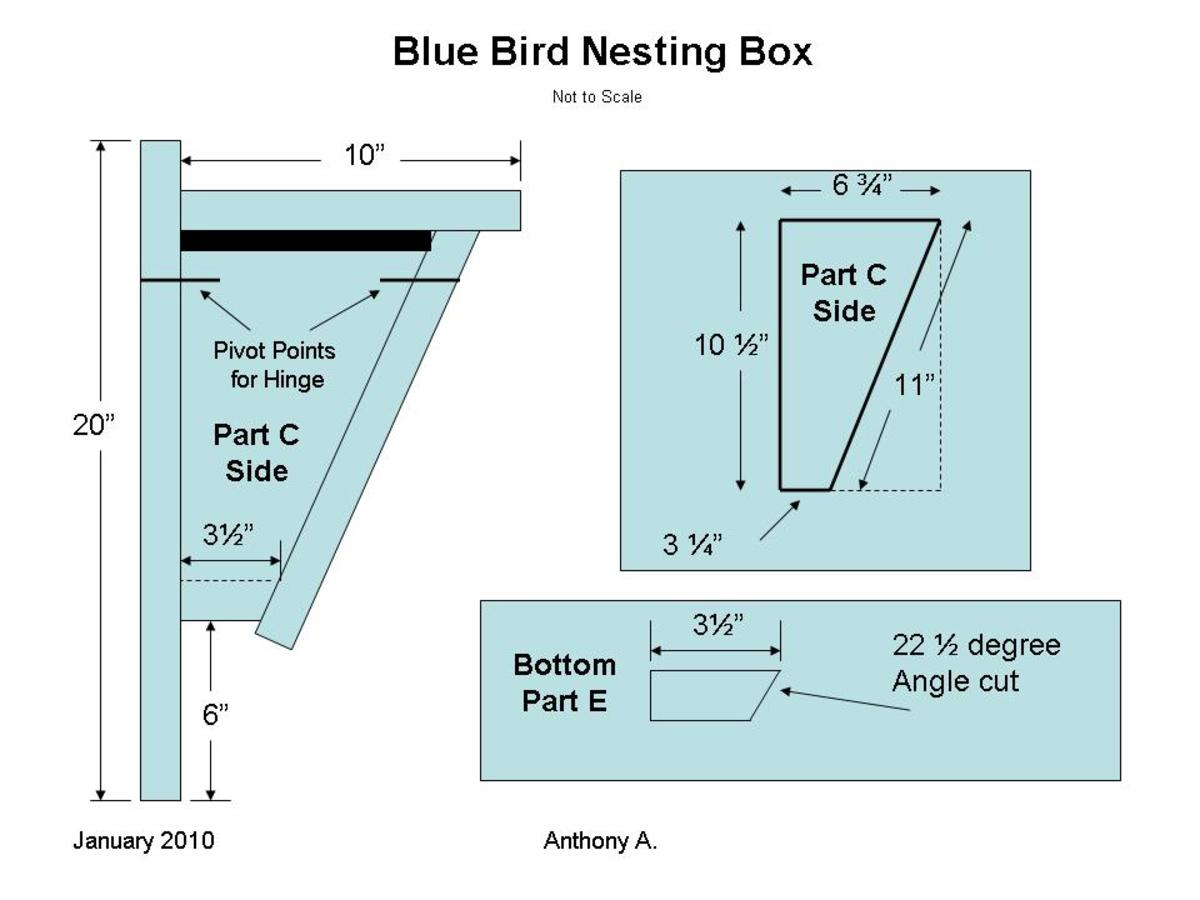 Bluebird Nest Box Plans How To Build A Peterson Bluebird House