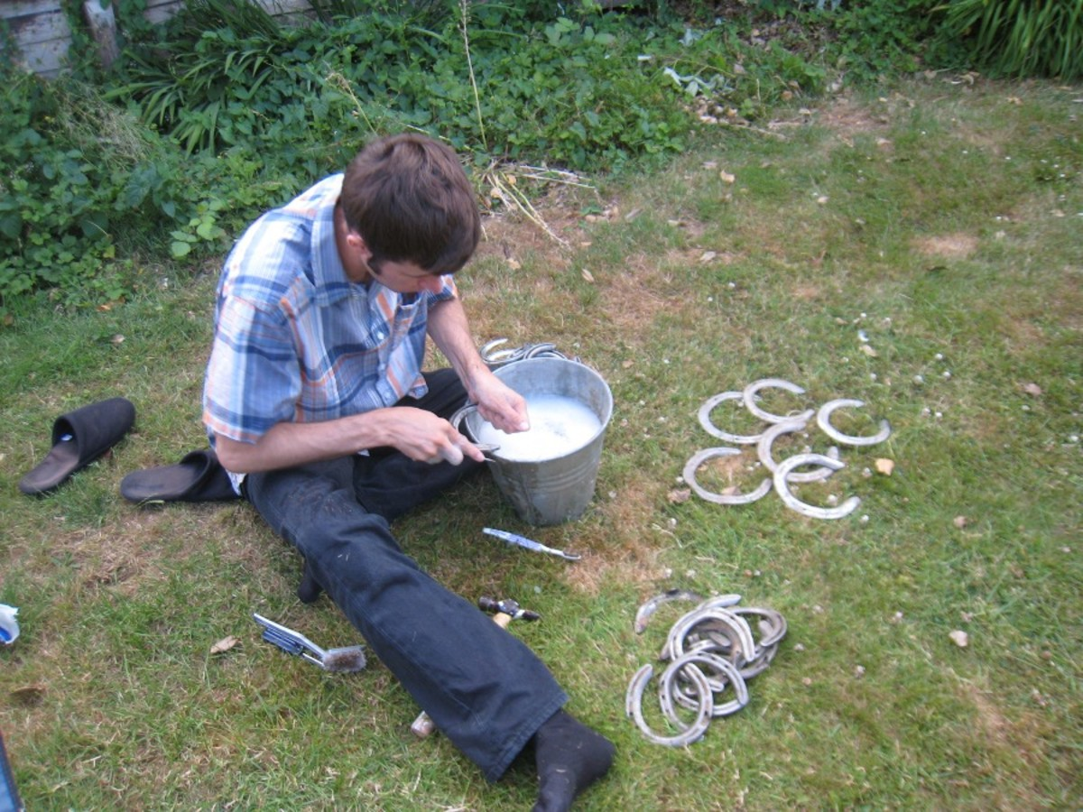 An arts and crafts worker begins work on horse shoes before they're turned into painted decorations