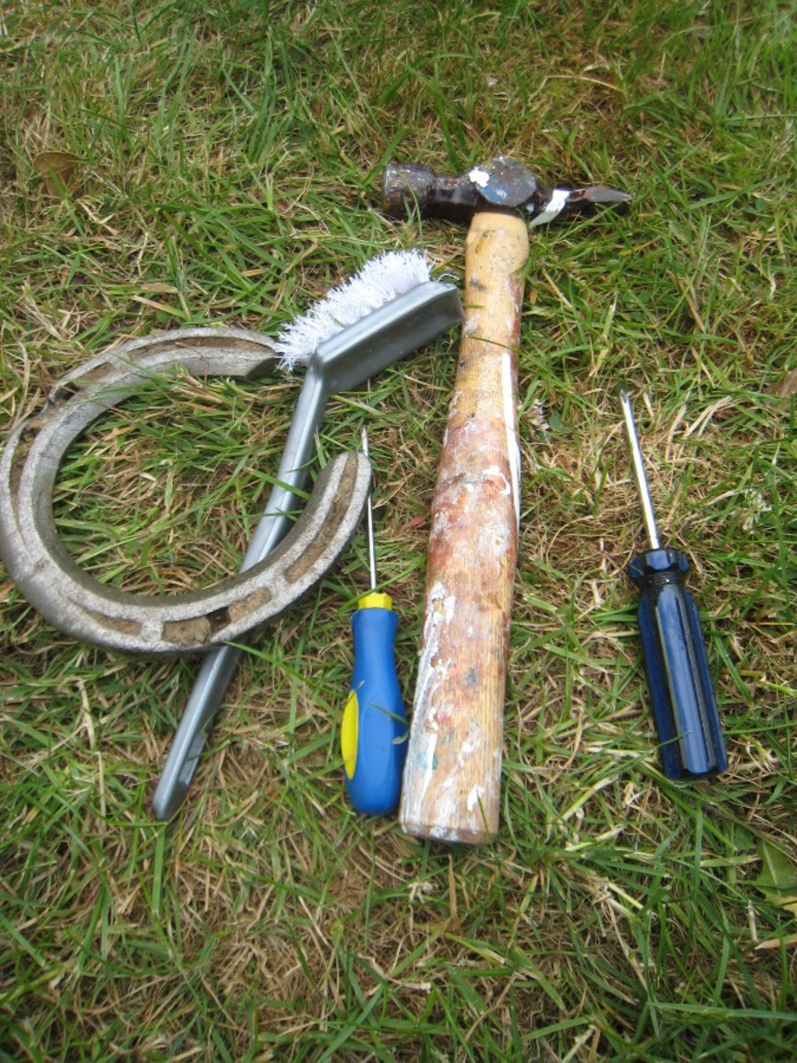 Tools: Hammers and screwdrivers are useful for removing trapped stones