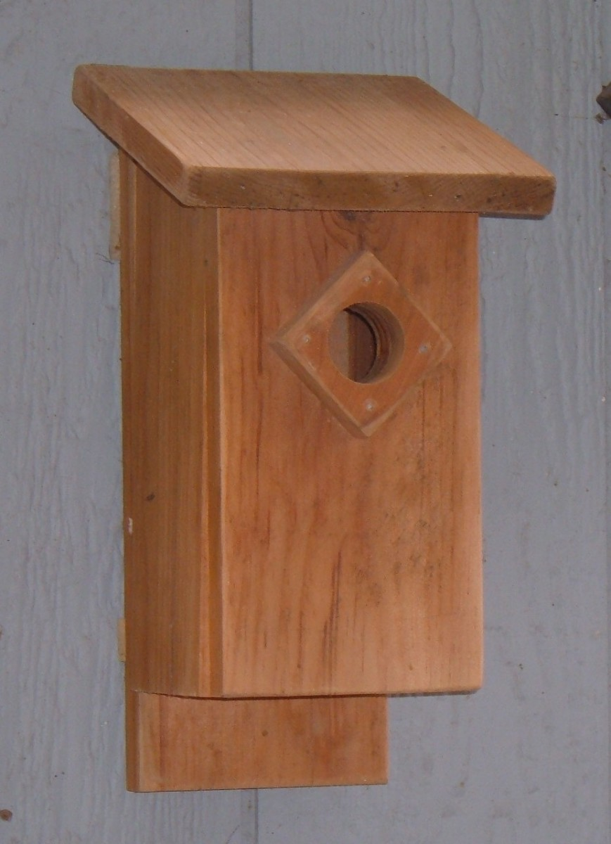 Bluebird Birdhouse Plans