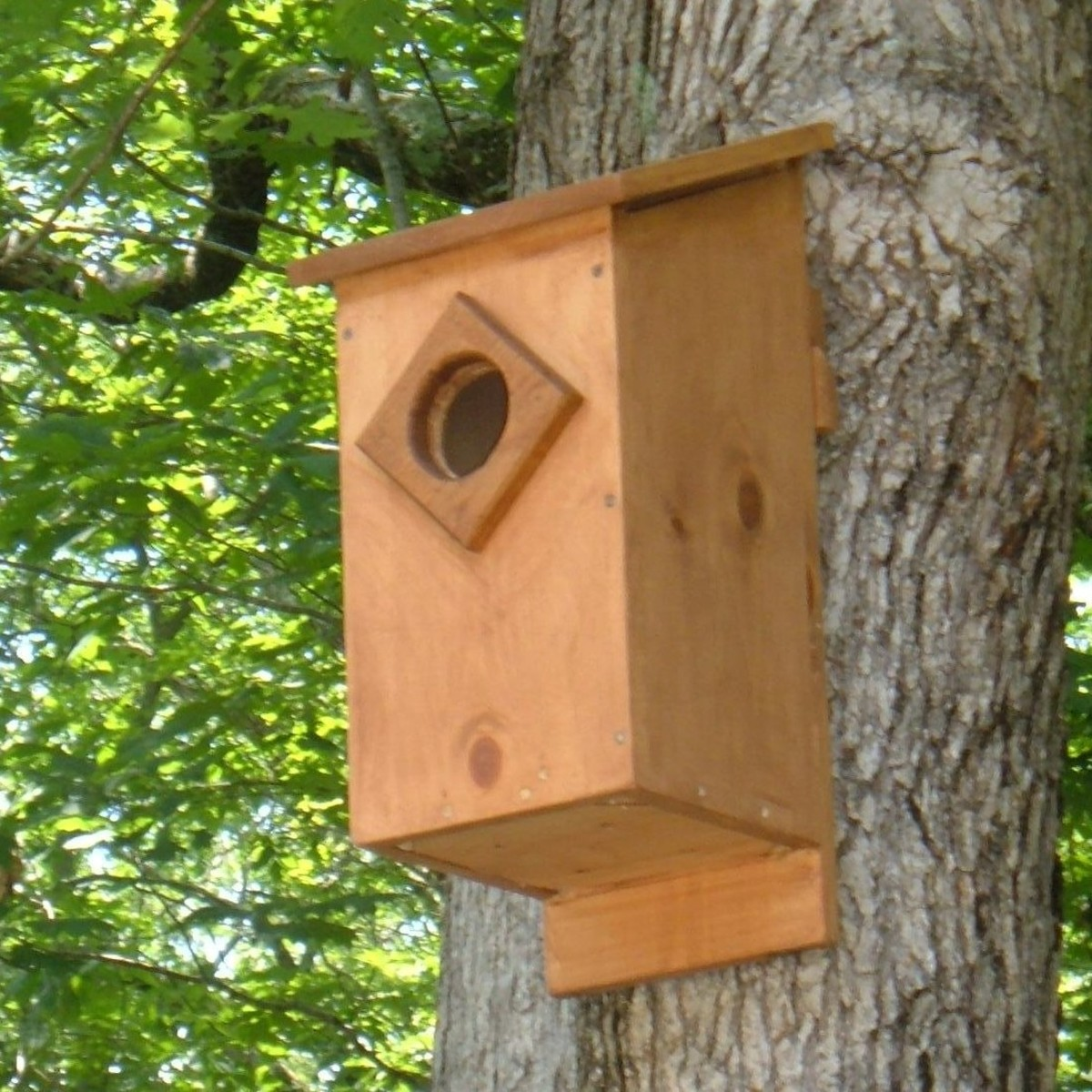 Owl Nest Box Plans