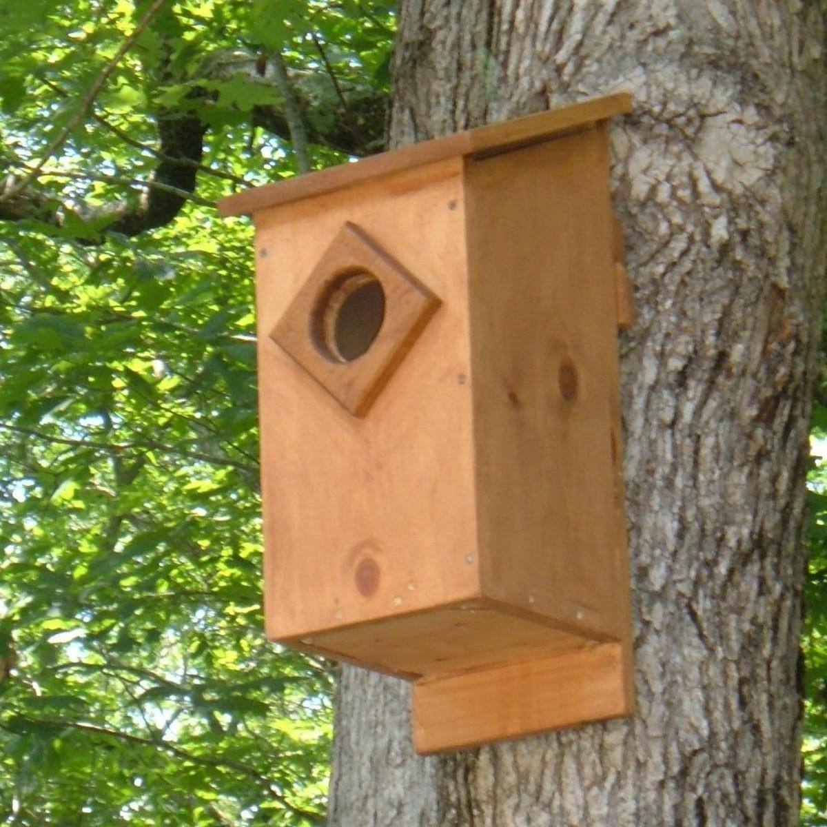 Owl Nest Box Plans