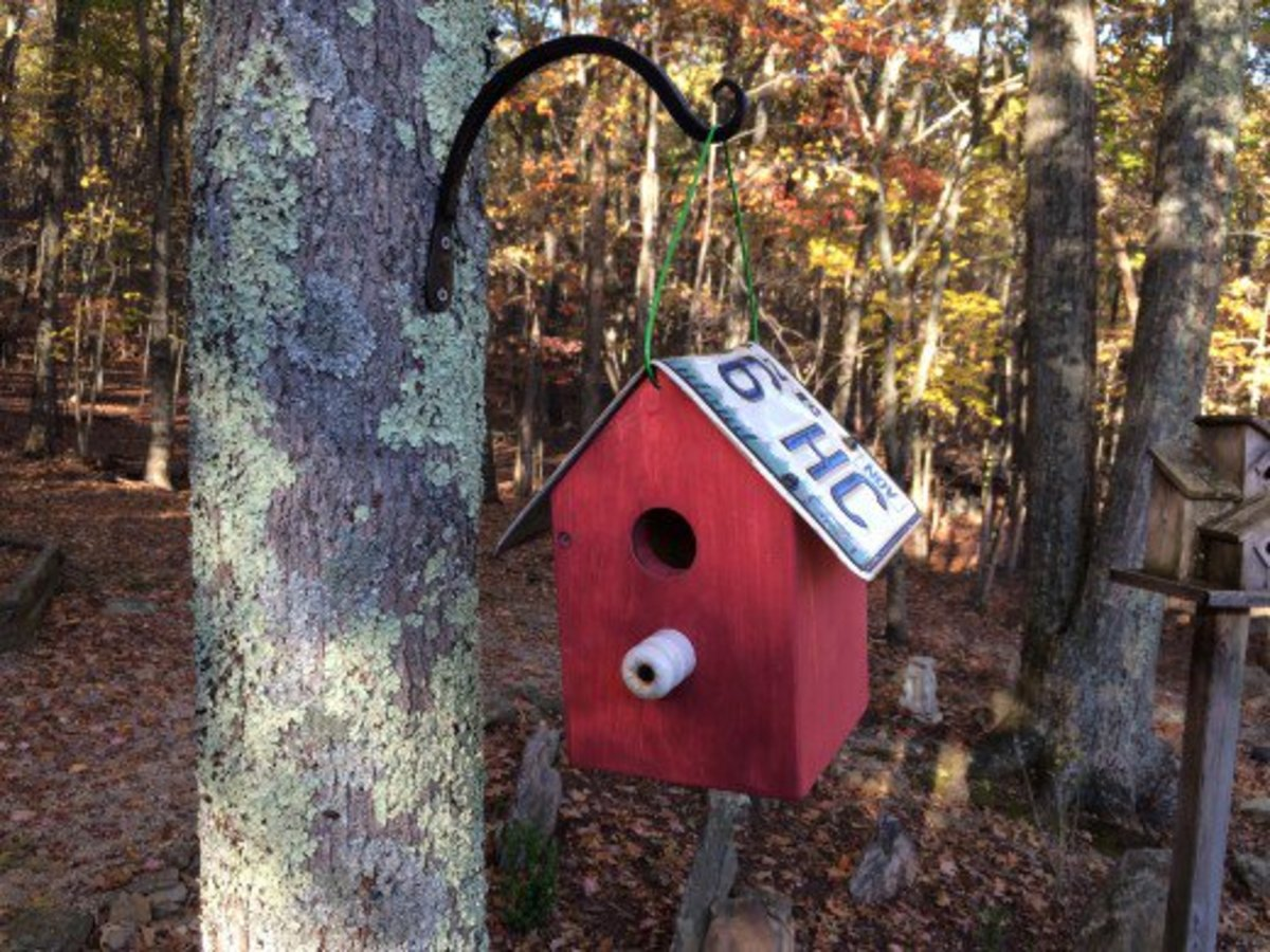 Country Cottage License Plate Birdhouse