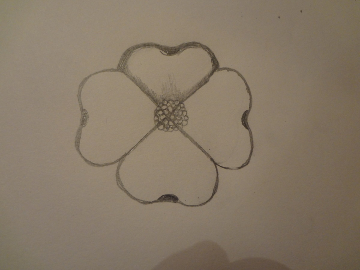 how-to-draw-a-dogwood-flower
