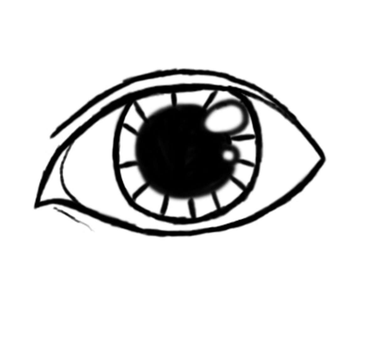 Draw in the top part of the eyelid as it appears in this step.