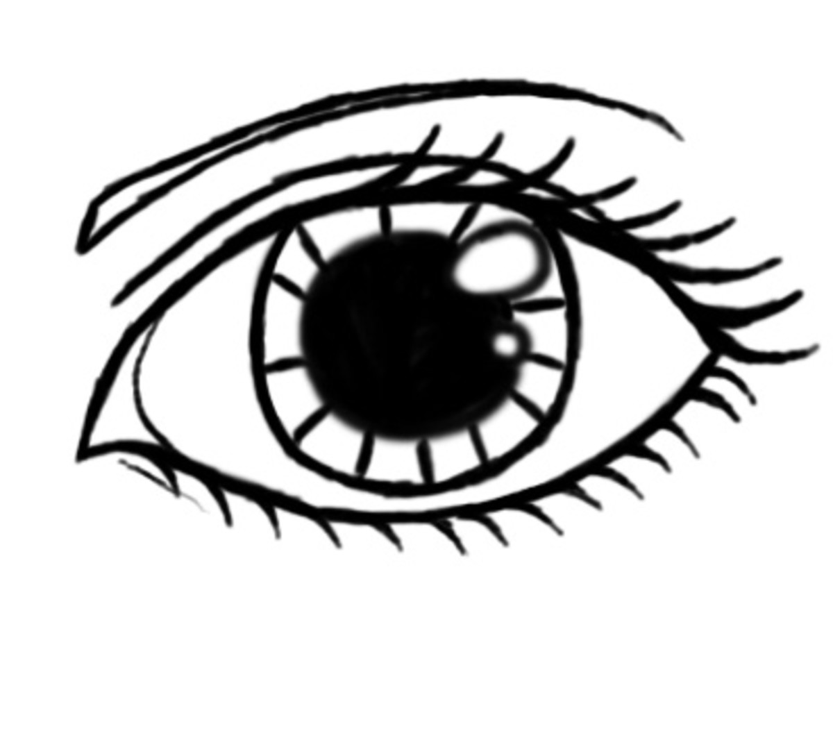 draw in a thin eyebrow at the top of the eye and you're done! There you have it folks, a female eye! I hope this was helpful to someone out there.
