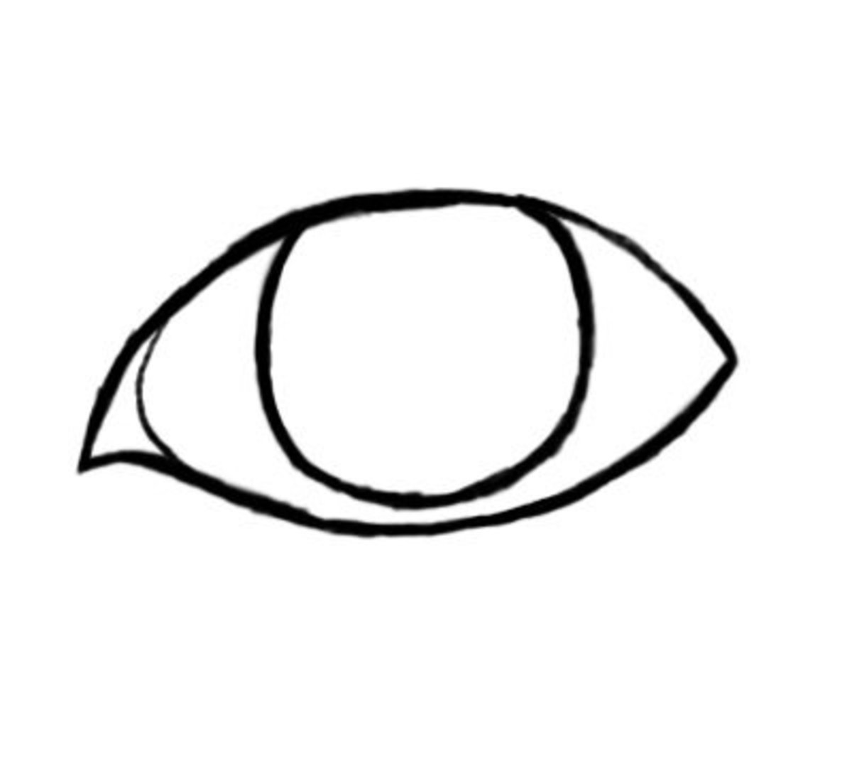 Draw the eye lens and the corner of the left eye similar to the way it lookshere.