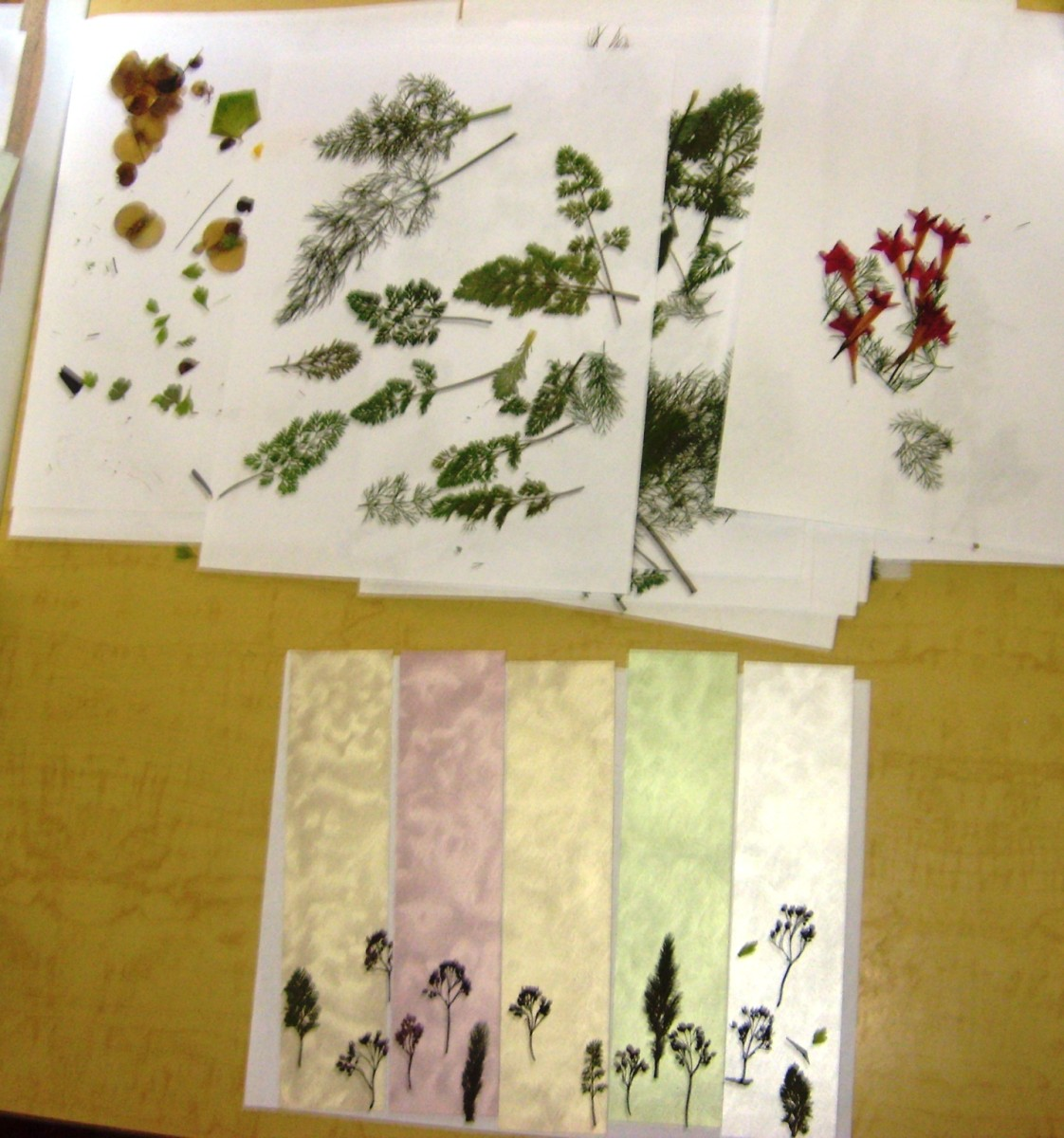 Arrange many pages of pressed leaves and flowers so that you have a pallet of shapes and colors to pull from as you create.