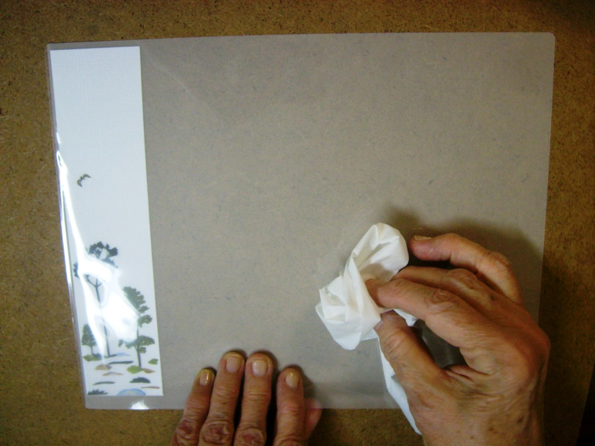 Use a tissue to remove any lint or hair, inside and out of the laminating sheets.