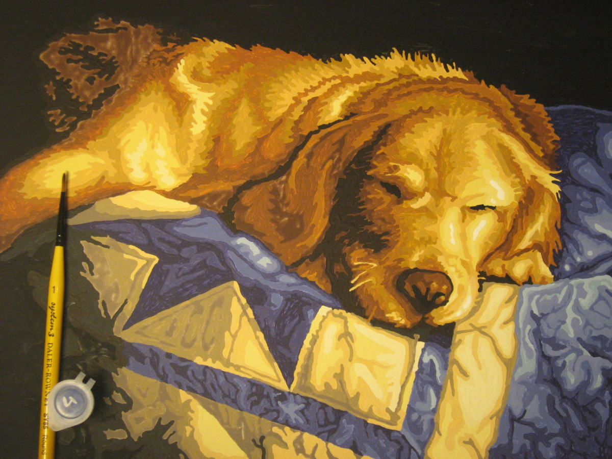 Sleeping dog—acrylic paint-by-numbers set