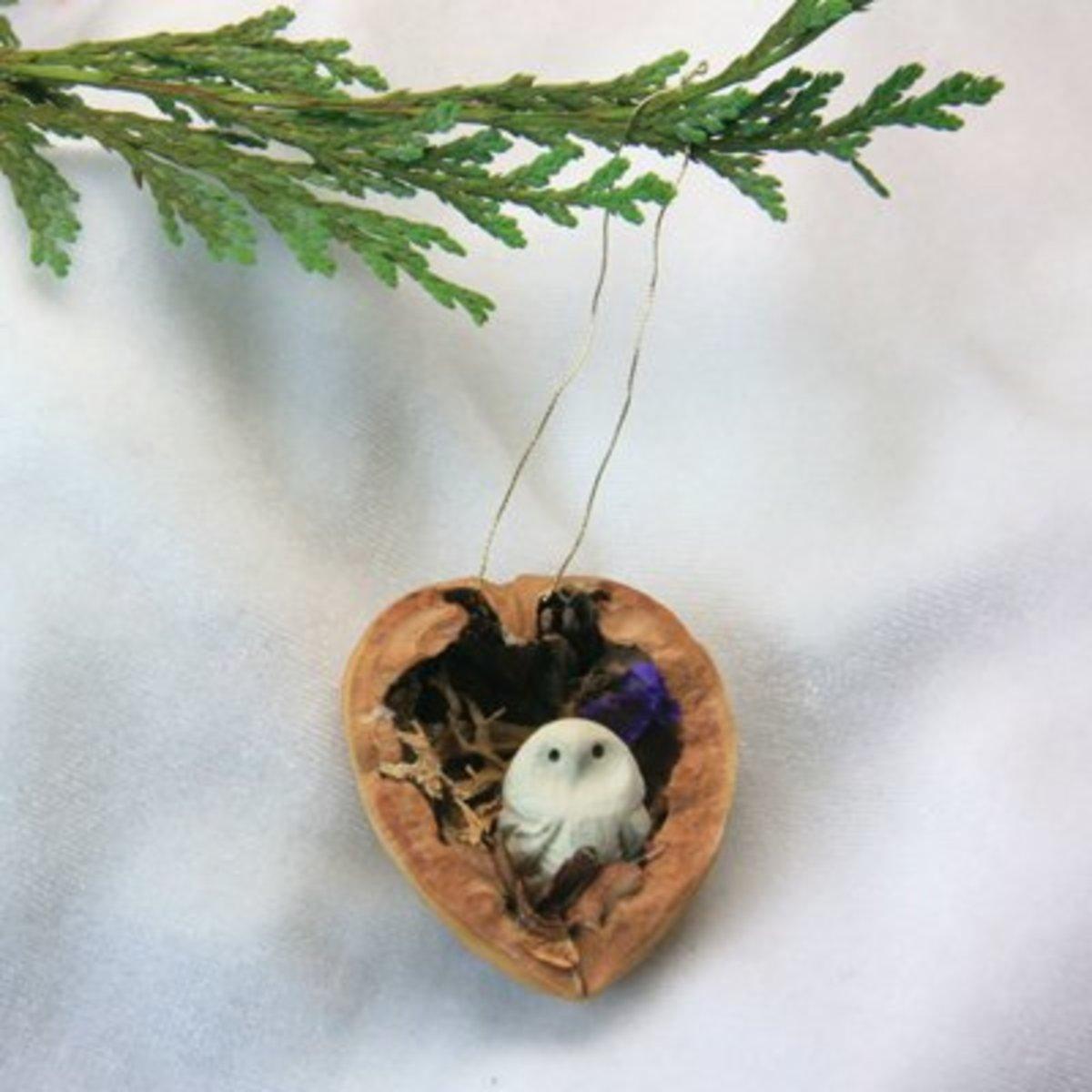 Craft Ideas For Walnut Shells