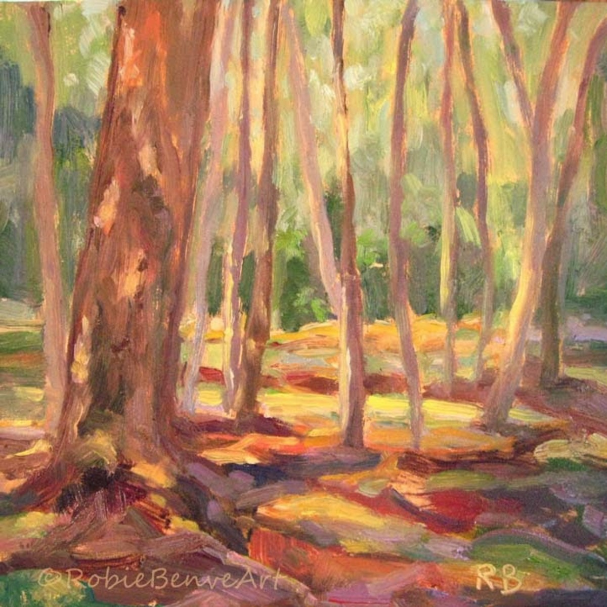 "I love to get out into the woods and paint or sketch on location. I painted this small piece at a local Metro park. ""patches of Light"", oil on board by Robie Benve"