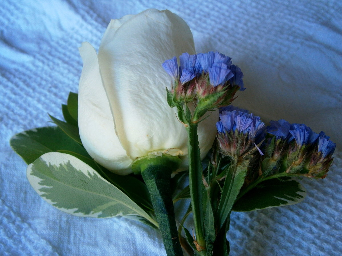 The finished boutonniere is seen as the first picture of the article.