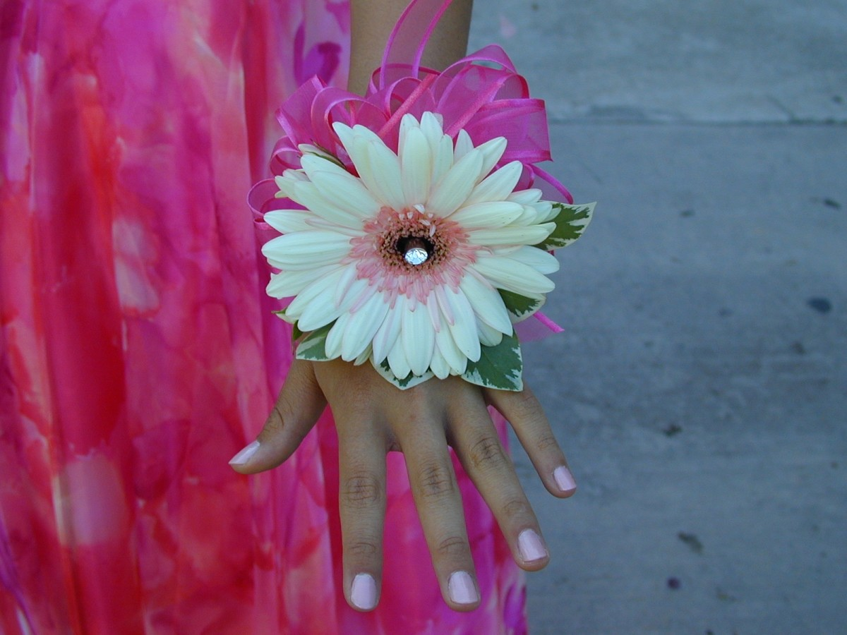 Rachel's corsage--matching fushsia ribbon and jewel to complement her dress.