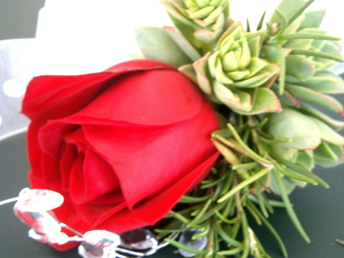 I use succulents and rosemary from my backyard to accent a single red rose--more akin to the traditional boutonniere, where herbs are also used.