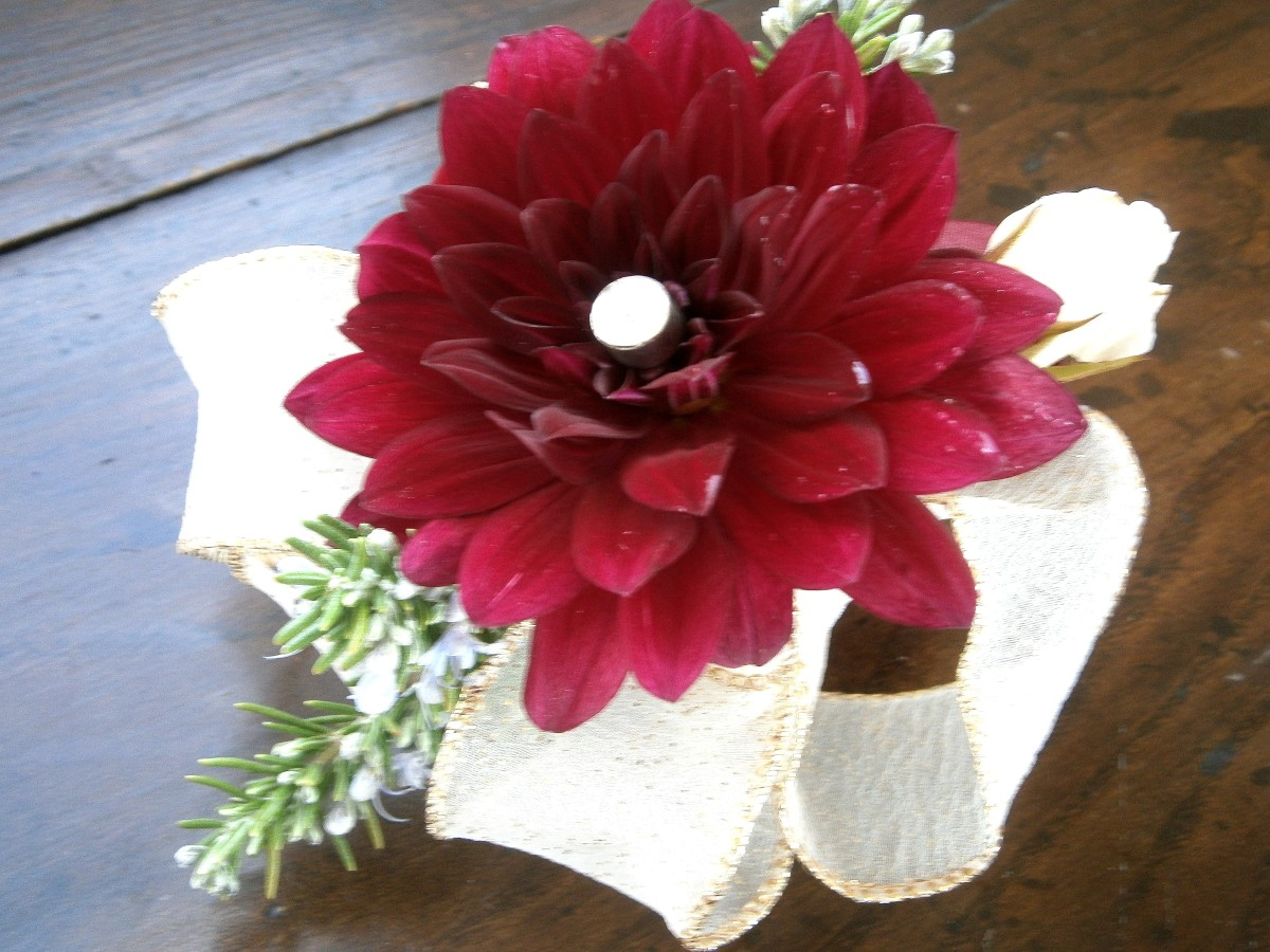 Brian's boutonniere--a single wine-colored  dahlia, small white roses and sprigs of rosemary.