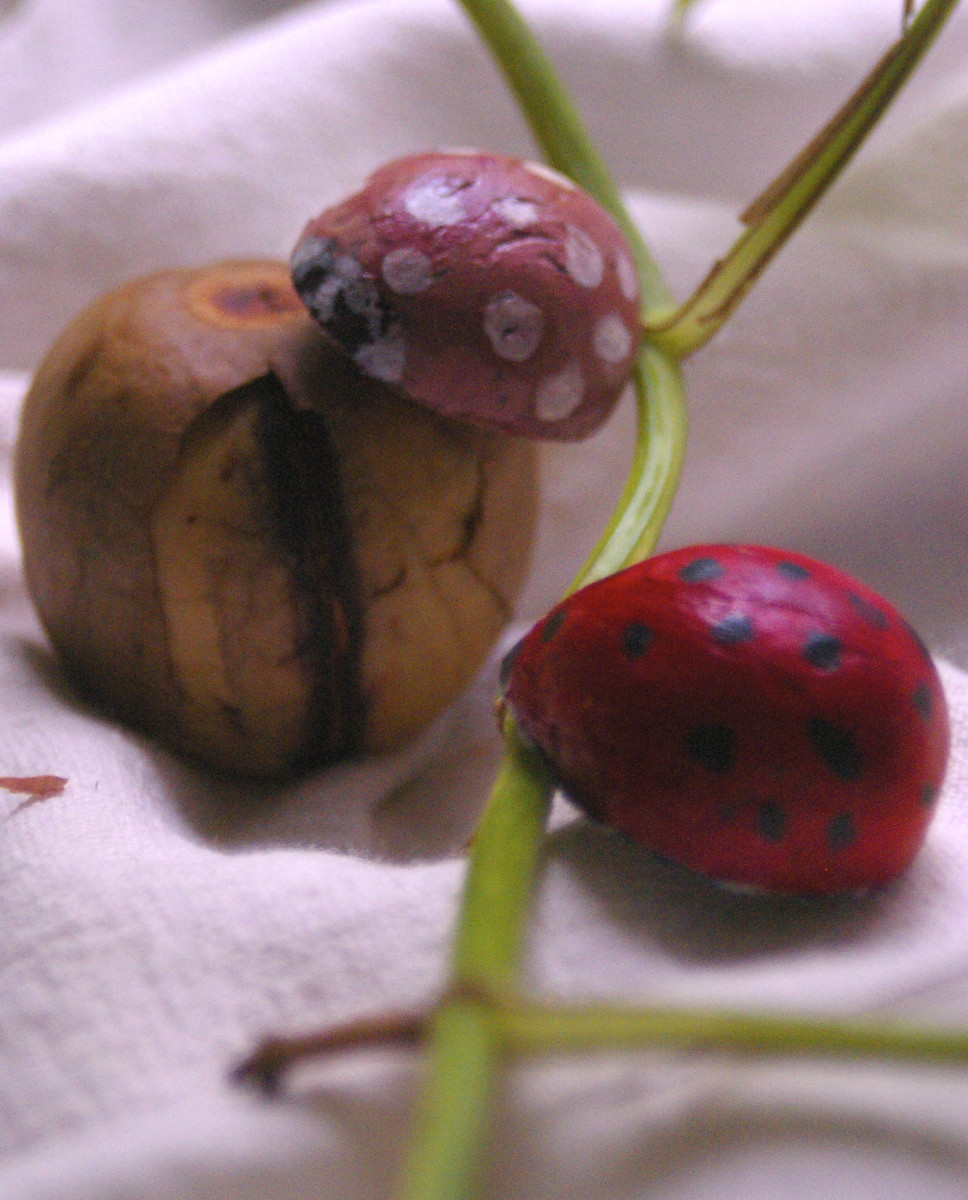 As you can see, the seeds have shrunk quite a bit, to just the right size for a fun brooch.